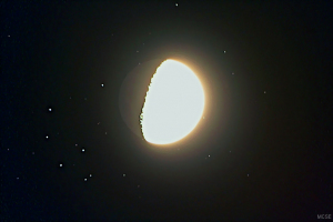 A Hold elfedte a Fiastyúkot