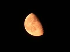 A kelő Hold Szegedről (Csák Balázs felvétele, 2006. 09. 12., 21:34 NYISZ, Panasonic DMC-FZ15, f/5.6, 1.0 sec, f=72 mm (420 mm ekvivalens), ISO 64)