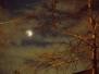 Holdfogyatkozás, 2008.02.21.