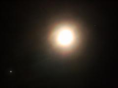Holdkoszorú