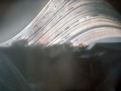 """A fotót készítette: Kálmán Attila, Hely: Littlehampton, Idő: 2012 június 21-től december 21-ig., Irány: Kelet, Fotópapír: Illford """"A filmes tubus kb. 3 méter magasan lett rögzítve a házunk oldalán lévő antennarúd alsó, stabilabb szakaszára. A fotó érdekessége a bal alsó sarokban látható lépcsősor torz képe, ezenkívül a bokrok közt kelő Nap vonalai, valamint hogy gyakorlatilag semmilyen fényerősség, illetve kontraszt beállitást nem alkalmaztam/igényelt. Úgy láthatóak a részletek ahogy a tubusból is látszott. Retusálásra viszont szükség volt a fél év alatt lerakódott porszemek miatt."""""""