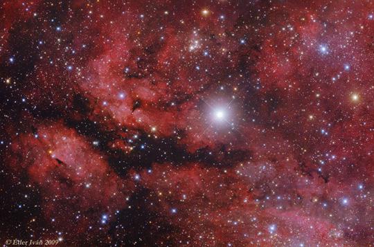 A gamma Cygni körüli ködök részlete: az IC 1318, a Pillangó-köd (Éder Iván fotója)