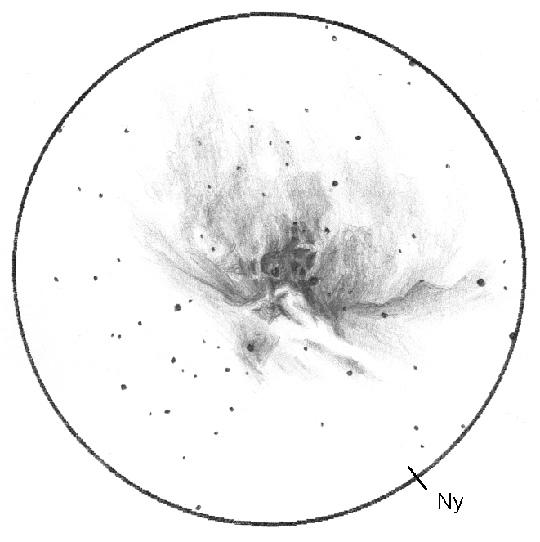 """Az Orion-köd (M42-43) Wolf Sándor rajzán. Munkája az archívumban található egyik legjobb rajz az égitestről: """"Minden nagyításnál rengeteg részlet látszódik. A külső területek 60, míg a belsők 185x-ös nagyítással mutatják a legtöbb részletet."""" A rajz elkészítéséhez Sándor egy 203/1200-as Newton-reflektort használt 60x-os nagyítással. Az észlelés dátuma 2004. 12. 18/19, a rajz 1 óra 50 perces munka eredménye. A látómező mérete 45 ívperc."""