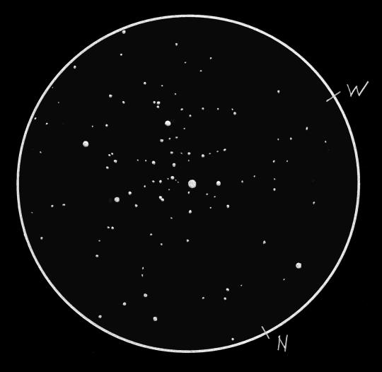 Alessi 1 (= LeDrew 1) NY Cas (Sánta Gábor, 7L, 55x)
