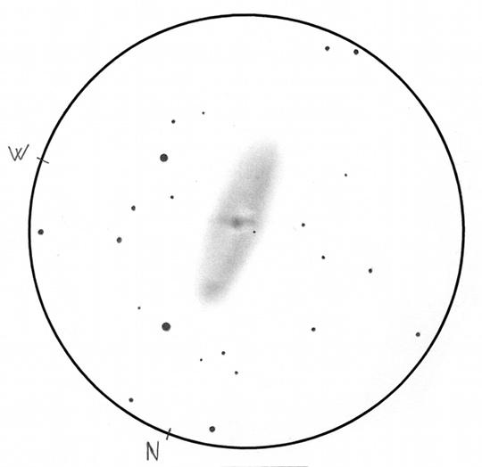 A látszó Világegyetem egyik legnagyobb átmérőjű és fénykibocsátású spirálgalaxisa, az NGC 2336 a Camelopardalisban. Tóth Zoltán rajza 50 cm-es Dobsonnal, 273x-os nagyítással, 16'-es Lm-ben mutatja a galaxis belső részét