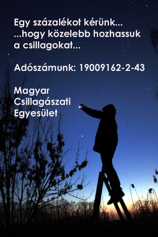 20130126-egyszazalek