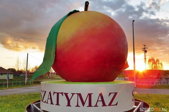 Tudtad, hogy Szatymaz az őszibarack fővárosa?